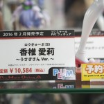 201601230001 (19)
