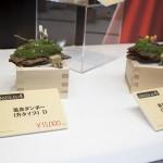 201604280001コトブキヤ立川本店 (113)