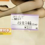 秋葉原フィギュア情報-ボークスホビー天国 (35)