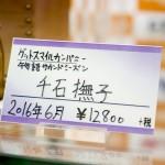 20160617秋葉原フィギュア情報-ボークスホビー天国 (11)
