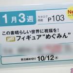 プライズフェア45・セガプライズ (22)