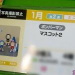 プライズフェア45・フリュー (48)