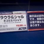 20170418宮沢模型展示会2017春 (450)