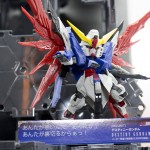 201505290007 (91)
