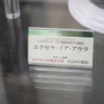 201510110001 (26)