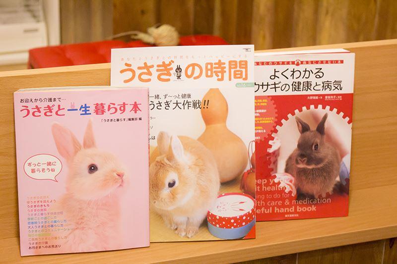 ▲ウサギと、もっと仲良くなりたい人にオススメな本も。