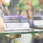 201604290004秋葉原フィギュア情報1 (69)