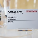 20160520000魂フィーチャーズ2016・らんま (1)