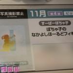 201605250001-プライズフェア44・フリュー (30)