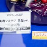 20160617秋葉原フィギュア情報-ボークスホビー天国 (18)