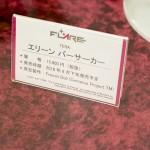 秋葉原フィギュア情報-ボークスホビー天国 (28)