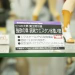 0722秋葉原フィギュア情報・ボークス (25)