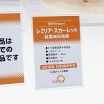 20160724ワンフェス2016夏・フィギュア・キューズQ (22)