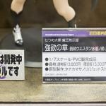 20160724ワンフェス2016夏・フィギュア・オーキッドシード (14)