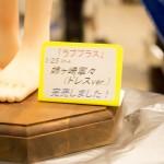 20160724ワンフェス2016夏・フィギュア・企業・アマチュアディーラーエリア (2)