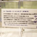 20160724ワンフェス2016夏・フィギュア・海洋堂 (89)