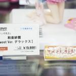 20160729秋葉原フィギュア情報-ボークスホビー天国 (1)