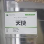 20160902秋葉原フィギュア情報・あみあみ秋葉原店 (31)