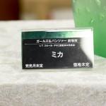 miyazawamokei2016winter-12