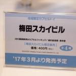 20170220・wf2017w・kaiyodo (16)