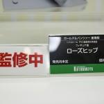 20170220・wf2017w・KOTOBUKIYA (34)