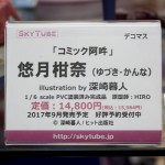 20170324akihabarafigure (63)