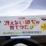 20170407akihabarafigure (21)
