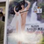 20170418宮沢模型展示会2017春 (216)