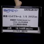 20170418宮沢模型展示会2017春 (117)