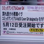 20170512akihabarafigure (6)