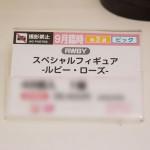 第48回プライズフェア・フリュー (2)