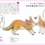 恋するいきもの図鑑11フェネック