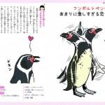 恋するいきもの図鑑17フンボルトペンギン