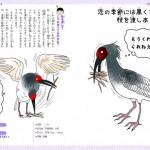 恋するいきもの図鑑22トキ