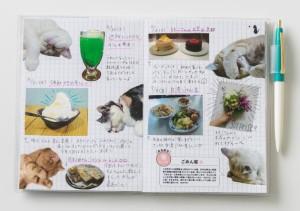 猫たちがたっぷりなフリーページに写真を貼ったりメモを書いたり